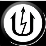 dynamic RIC Electric logo lakeland fl electrician